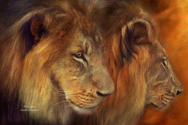 Mixed Media - Two Lions by Carol Cavalaris