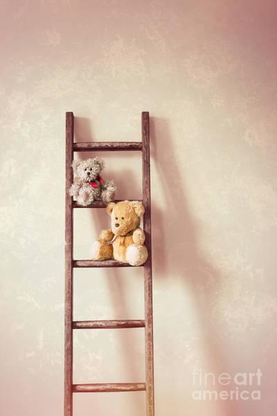 Rungs Wall Art - Photograph - Two Little Teddy Bears by Amanda Elwell