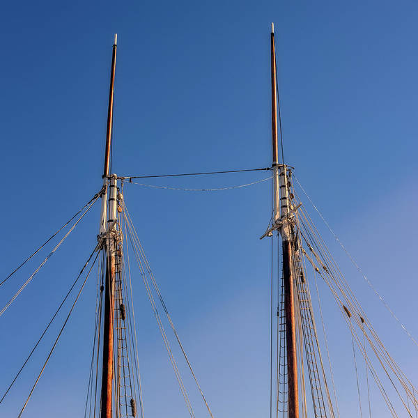 Photograph - Two Masts by Guy Whiteley