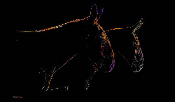 Digital Art - Two Mules by Ericamaxine Price