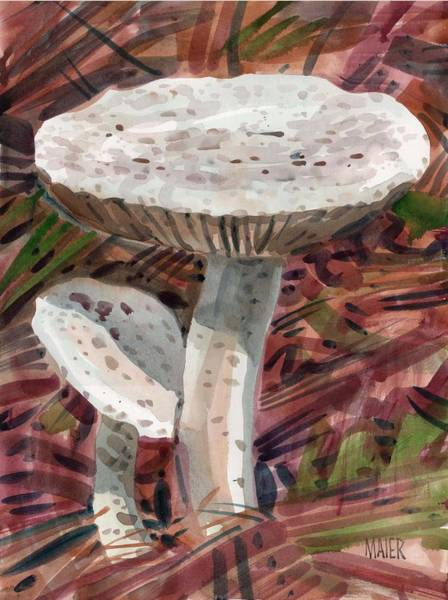 Mushroom Painting - Two Mushrooms by Donald Maier