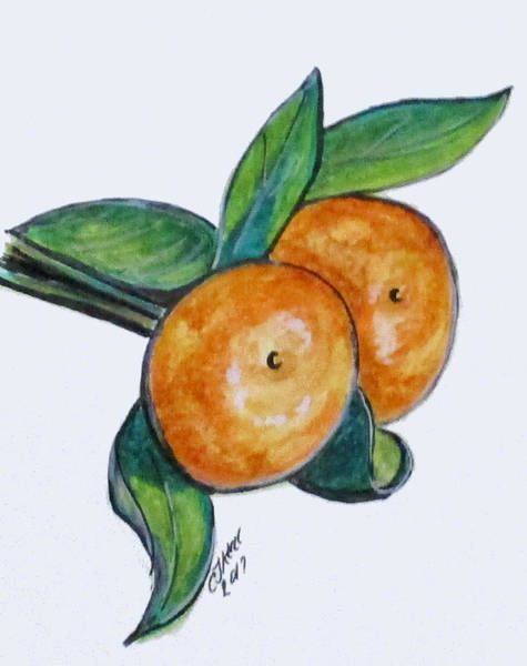 Painting - Two Oranges by Clyde J Kell
