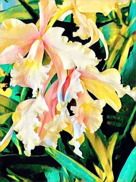 Two Orchids Pink Turquoise Art Print