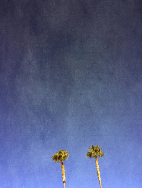 Tree Wall Art - Photograph - Two Palm Trees- Art By Linda Woods by Linda Woods