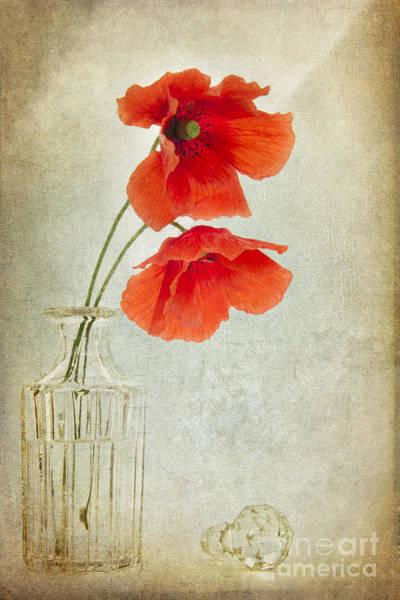 Poppies Digital Art - Two Poppies In A Glass Vase by Ann Garrett