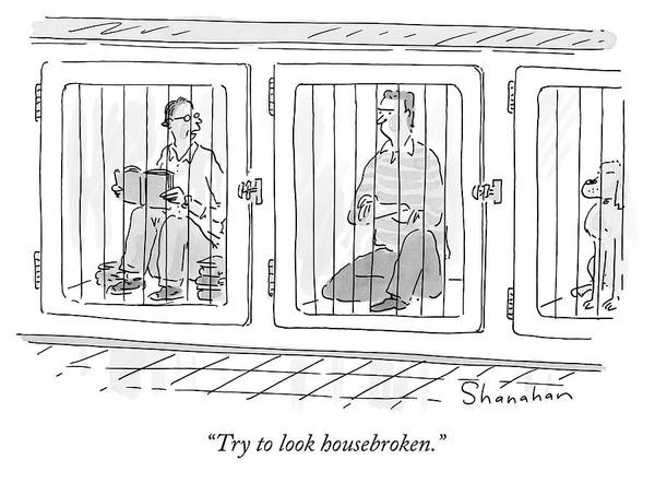 Prison Drawing - Two Prisoners Sit In Separate Dog Kennel Cells by Danny Shanahan