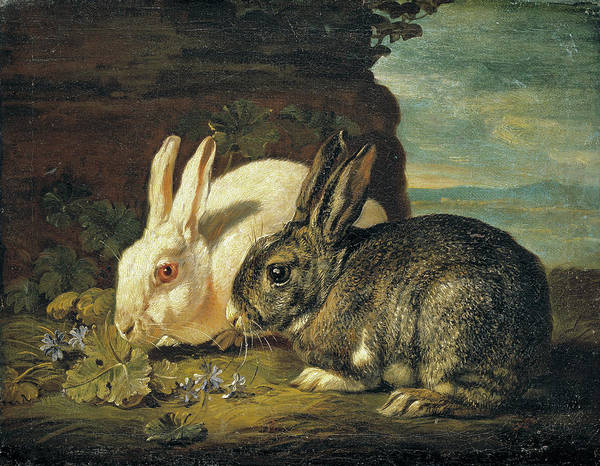 Cabbage White Painting - Two Rabbits by David de Coninck