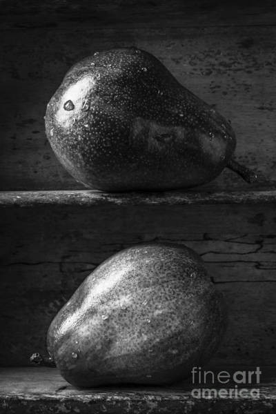 Wall Art - Photograph - Two Ripe Pears In Black And White by Edward Fielding