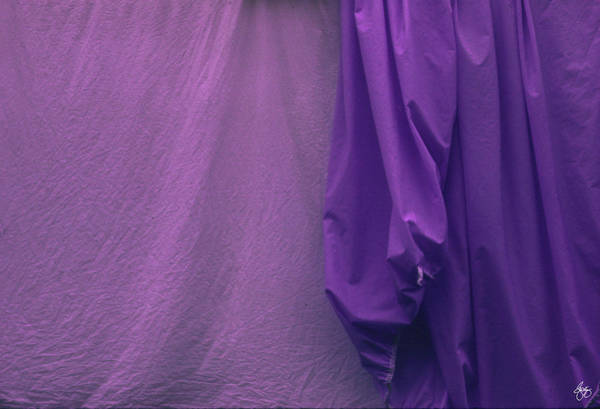 Photograph - Two Sheets Abstract Purple Fuscia by Wayne King