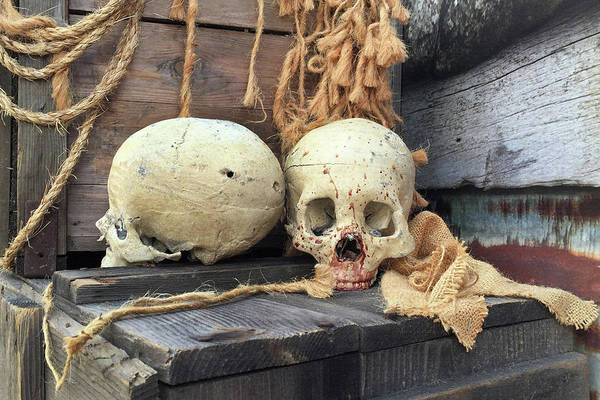 Life Or Death Photograph - Two Skullls by Art Block Collections