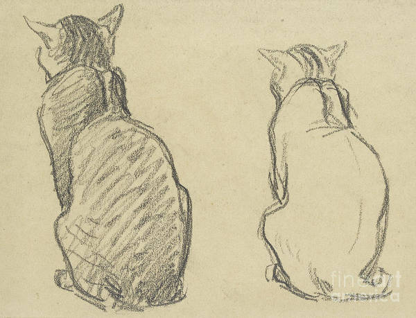 Pussycat Drawing - Two Studies Of A Cat by Theophile Alexandre Steinlen