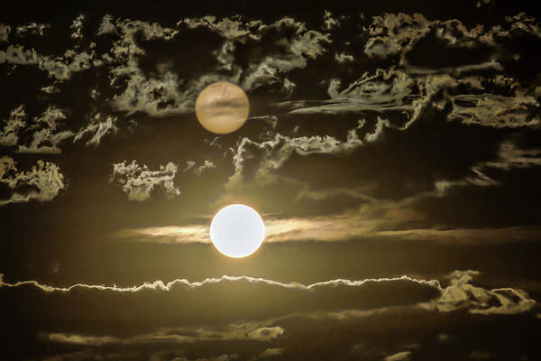 Photograph - Two Suns by Janice Bennett
