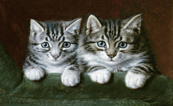 Wall Art - Painting - Two Tabby Kittens  by Horatio Henry Couldery