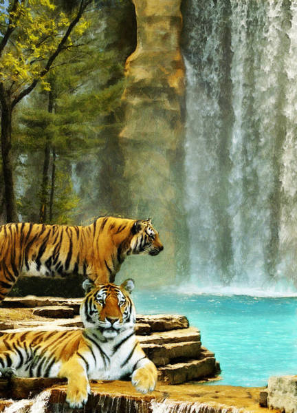 Digital Art - Two Tigers by JGracey Stinson
