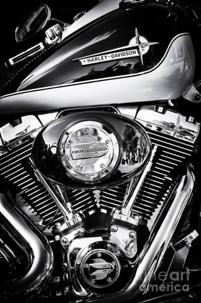 Harley Davidson Black And White Wall Art - Photograph - Two Tone Hd by Tim Gainey