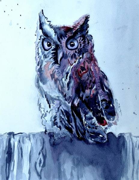 Painting - Two Tone Owl by Beverley Harper Tinsley