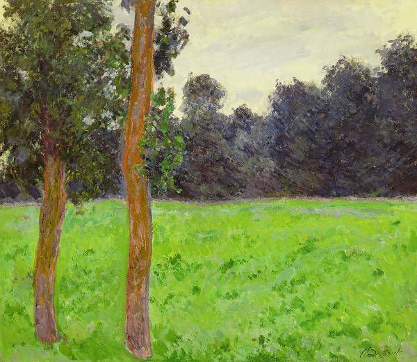 Prairie Grass Painting - Two Trees In A Field by Claude Monet