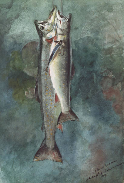 Pairs Painting - Two Trout by Winslow Homer