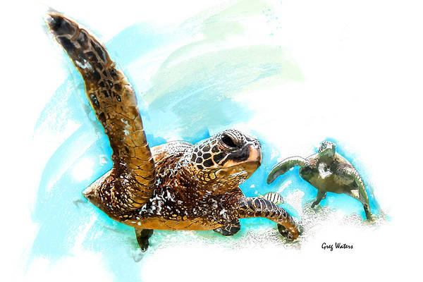 Wall Art - Photograph - Two Turtles by Greg Waters