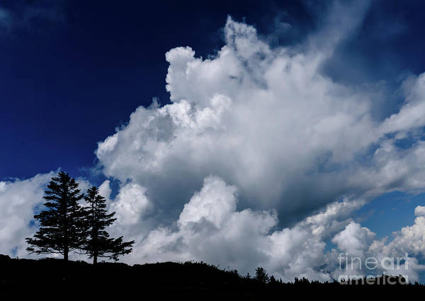 Swiss Alps Wall Art - Photograph - Two Weather The Storm by DiFigiano Photography