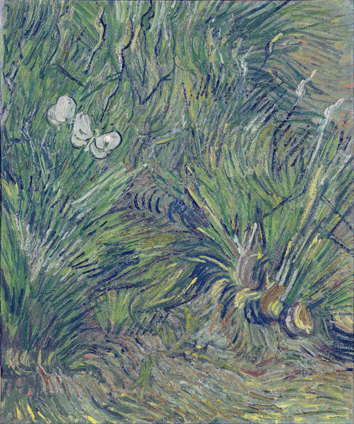 Cabbage White Painting - Two White Butterflies, 1889 by Vincent Van Gogh
