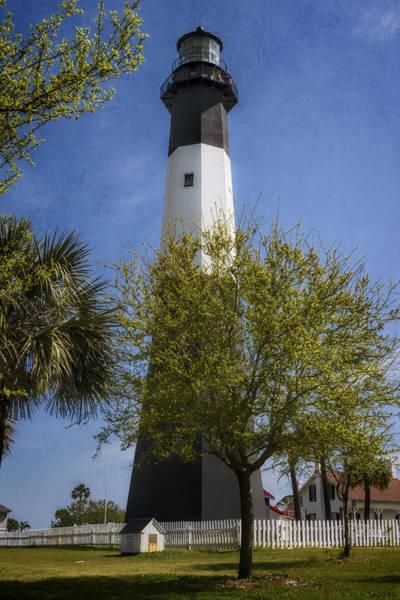 Photograph - Tybee Island Lighthouse by Joan Carroll