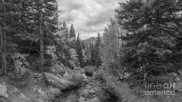 Bear Creek Photograph - Tyndall Creek Bw  by Michael Ver Sprill