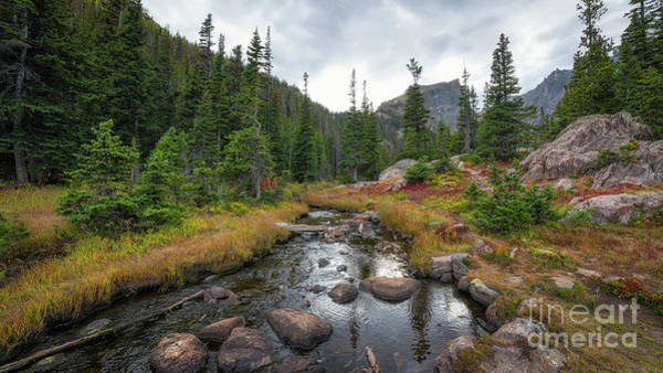Bear Creek Photograph - Tyndall Creek In The Rocky Mountains  by Michael Ver Sprill