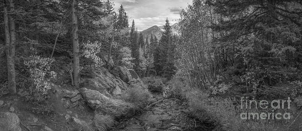 Bear Creek Photograph - Tyndall Creek Panorama Bw by Michael Ver Sprill