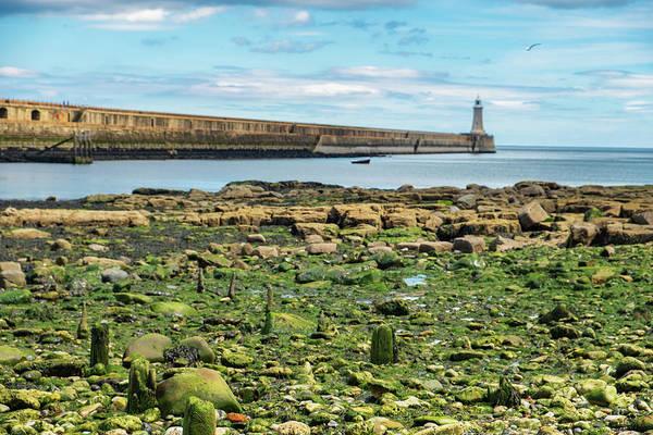 Sea Wall Art - Photograph - Tynemouth Pier Landscape In Color 2 by Iordanis Pallikaras