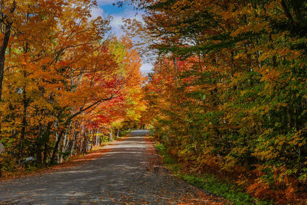 Typical Vermont Dirve - Fall Foliage Art Print