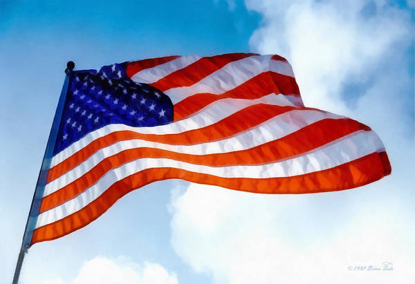 Photograph - Honoring Flag Day by Brian Tada