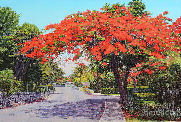 Painting - Ubs Poinciana by Eddie Minnis