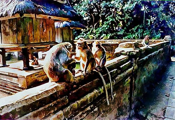 Photograph - Ubud Monkey Forest In Bali by Dorothy Berry-Lound