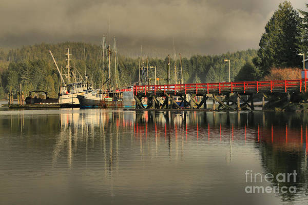 Photograph - Ucluelet Commerical Fishing Trawlers by Adam Jewell
