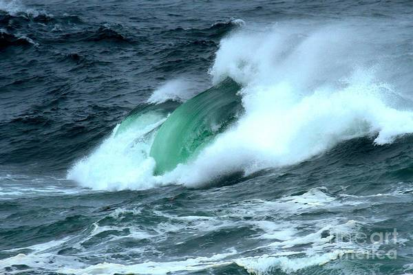 Photograph - Ucluelet Crashing Swells by Adam Jewell