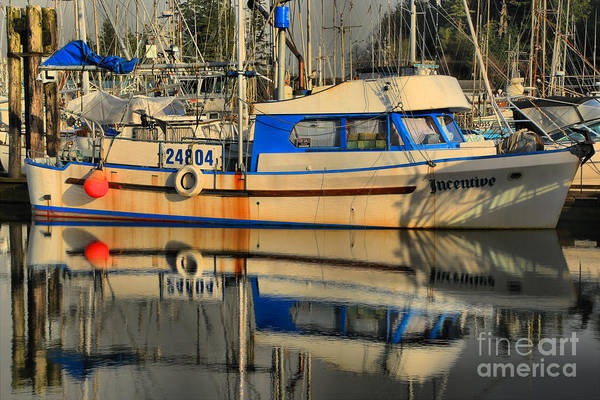 Photograph - Ucluelet Incentive by Adam Jewell