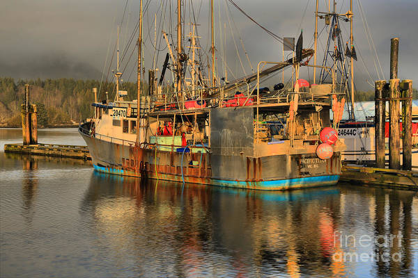 Photograph - Ucluelet Pacific Titan by Adam Jewell