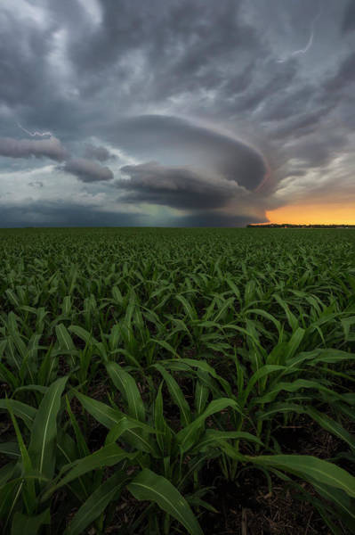 Middle Of Nowhere Photograph - UFO by Aaron J Groen
