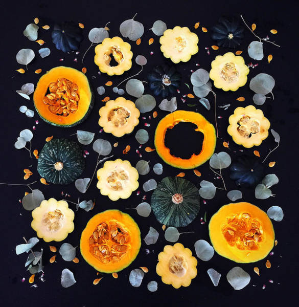 Photograph - Squash Patterns by Sarah Phillips