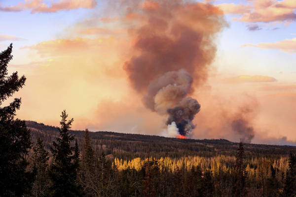 Forest Fire Photograph - Uinta Burn by Johnny Adolphson