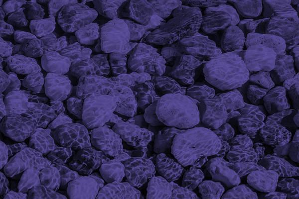 Photograph - Ultra Violet Underwater Enigma by Georgia Mizuleva
