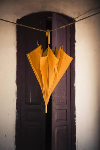 Photograph - Umbrella by Maria Heyens