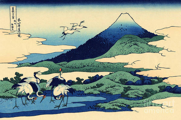 Stork Painting - Umegawa In Sagami Province, One Of Thirty Six Views Of Mount Fuji by Hokusai