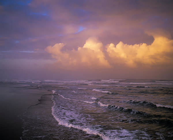 Photograph - Umpqua Beach by Robert Potts