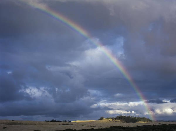 Photograph - Umpqua Dunes Sky by Robert Potts