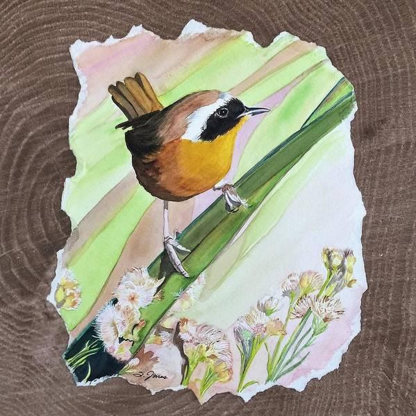 Uncommon Yellowthroat Art Print