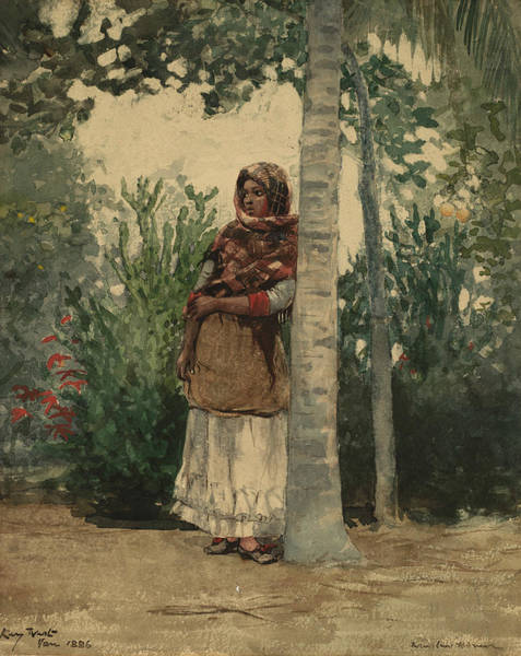Painting - Under A Palm Tree by Winslow Homer