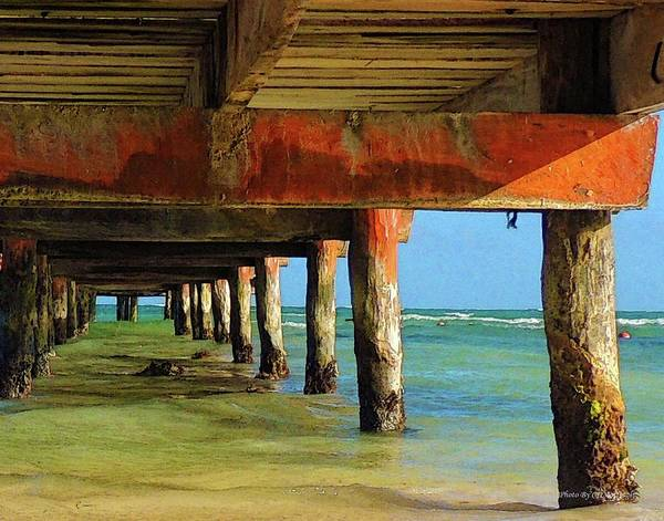 Photograph - Under Dock by Coleman Mattingly
