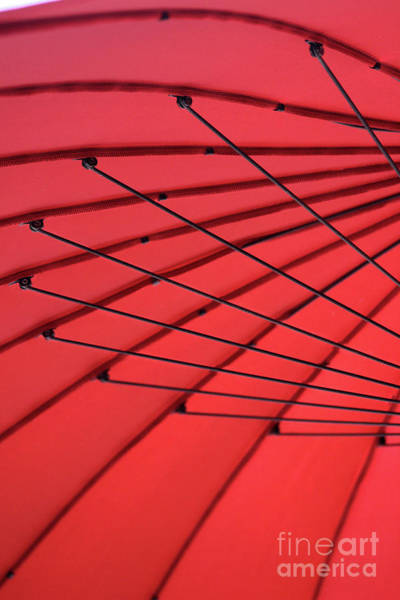 Photograph - Under My Red Umbrella by Karen Adams